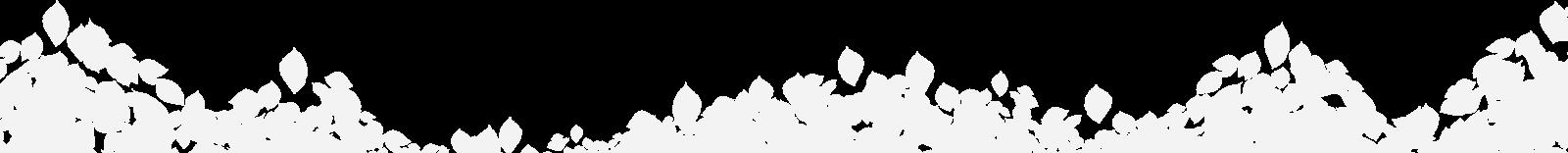 sfondo foglie nazena