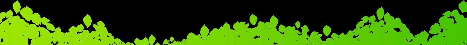 foglie verdi Nazena